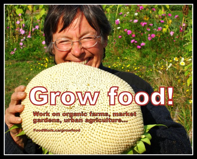 Jobs in local food, organic farming and sustainable agriculture: FoodWork.ca